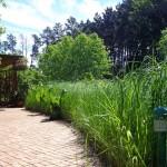 Grass Lined Brick Path