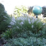 ball-with-fountain-grass