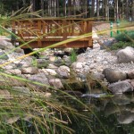 bridge-and-waterfalls-with-grass
